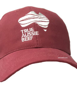 Baseball Caps with embroidery logo